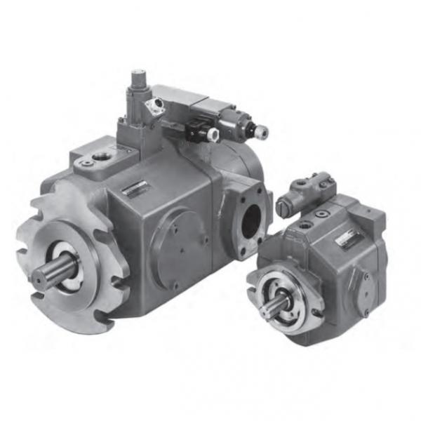 Vickers PV046R1K1JHNMFW+PV020R1L1T1NMF Piston Pump PV Series #2 image